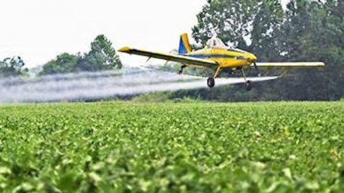 Piden prohibir la fumigación aérea y el uso de plaguicidas durante la carga de granos