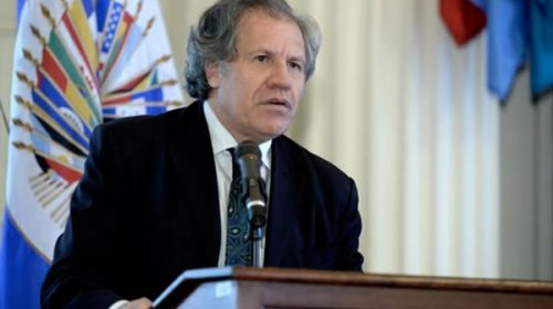 """La OEA evalúa formar un """"grupo de contacto"""" como mediación entre gobierno y oposición"""